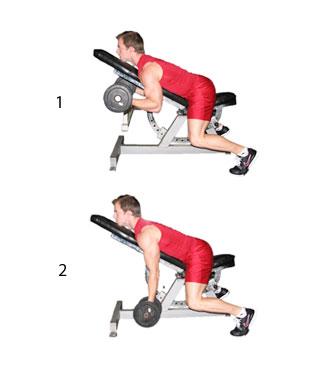 fitness schema beginner 10