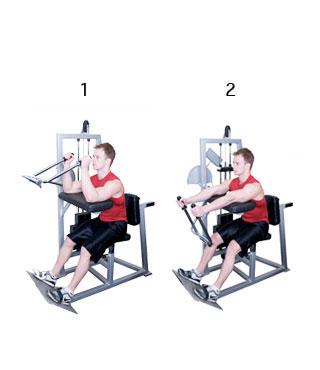 fitness schema beginners 9