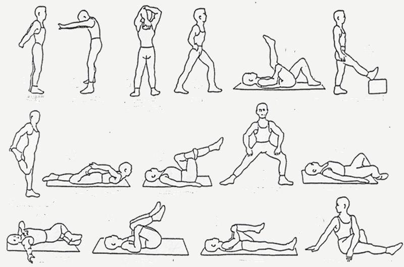 spieren in de benen