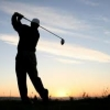 golfelleboog