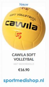 volleybal 1kopie